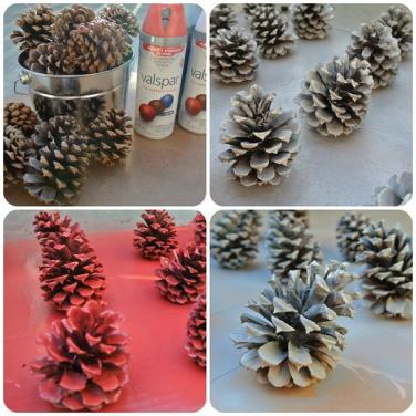 Pinecone Love!