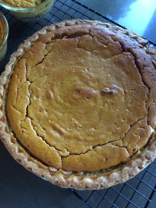 acorn squash and apricot pie recipe pumpkin fall spice easy